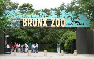 MetroCard  Summer: The Bronx Zoo